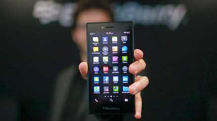 blackberry leap banner small